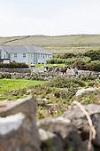 Ireland Inis Mor Island