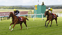 Flat Horse Racing - 2017 Qatar Goodwood Festival [Glorious Goodwood] - Day One One. Andrea Atzeni on Stradivarius win the Qatar Goodwood Cup [Group 1] 1st August 2017 Pic Colorsport/Steve Davies