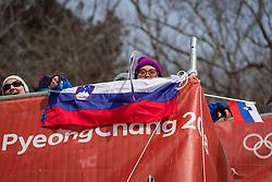 PYEONGCHANG-GUN, SOUTH KOREA - FEBRUARY 18: Supporters of Slovenia during the Alpine Skiing Men's Giant Slalom at Yongpyong Alpine Centre on February 18, 2018 in Pyeongchang-gun, South Korea.Photo by Ronald Hoogendoorn / Sportida
