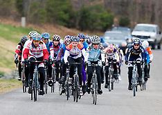 20080330 - Jefferson Cup - Women's 4 / Collegiate Wm B (Cycling)