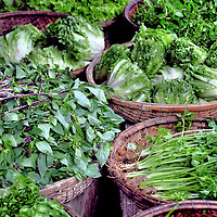 Mixed Green Vegetable Display at Ding Ba Market in Hue, Vietnam<br /> Among these mixed green vegetables on display in wicker baskets at Ding Ba Market in Hue, Vietnam, are Asian basil (rau quȇ), ceylon spinach (mȏng toi), Vietnamese lettuce (xà lách) and kankong or water spinach (rau muổng).  Ding Ba Market is Hue's largest and oldest.  In addition to fresh produce, you'll find local crafts, clothes, Vietnamese cuisine and lots of overwhelming activity.