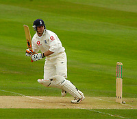 Photo. Glyn Thomas. <br />