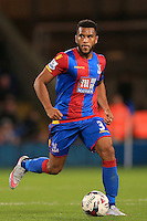 Adrian Mariappa, Crystal Palace