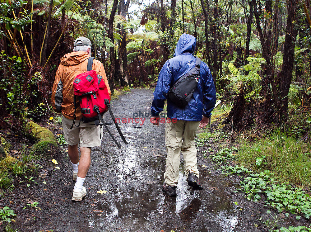 Eight people set out from Hilo, Hawaii on a Wilderness Inquiry hiking adventure on March 24, 2012, around the entire island.  From volcanic fields to rain forests, they saw the island as few tourists do..Bill Simpson (left) and Mark Maher lead the way down the Kilauea Iki trail.