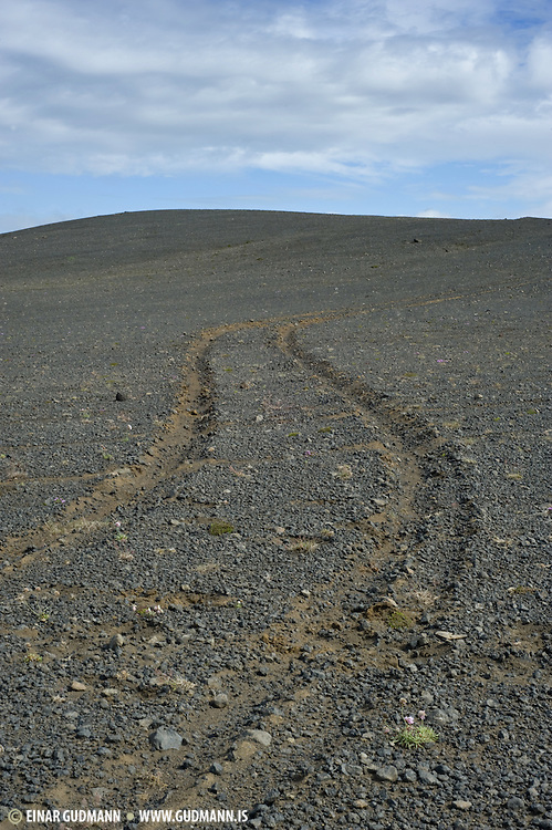 Offroad driving is forbidden in Iceland.