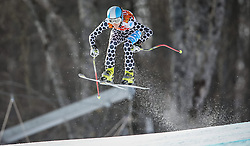 10.02.2014, Rosa Khutor Alpine Center, Krasnaya Polyana, RUS, Sochi 2014, Super-Kombination, Damen, Abfahrt, im Bild Macarena Simari Birkner (ARG) // Macarena Simari Birkner of Argentina during the Downhill of the Women's Super Combined of the Olympic Winter Games 'Sochi 2014' at the Rosa Khutor Alpine Center in Krasnaya Polyana, Russia on 2014/02/10. EXPA Pictures © 2014, PhotoCredit: EXPA/ Johann Groder