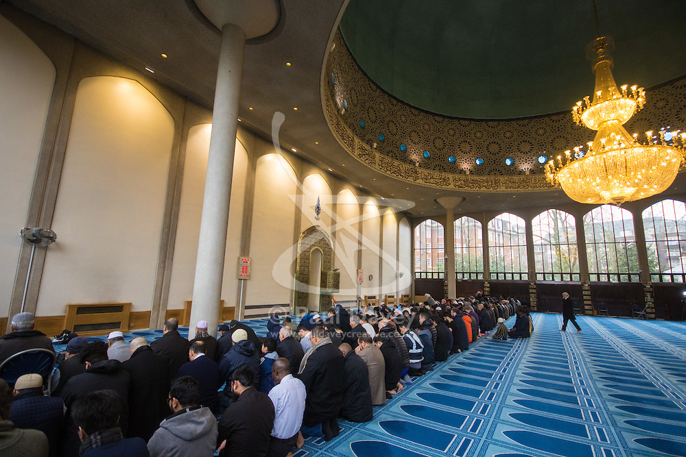 Regents Park Mosque, London, February 5th 2017. Dozens of curious non-Muslims are welcomed at Regent's Park Mosque in London as part of the Muslim Council of Britain's annual 'Visit My Mosque Day'. Visitors were able to observe prayers and we shown around the mosque by members, where there was a exhibition of the history and teachings of Islam. PICTURED: Muslim men pray in the men's prayer space under the Mosque's enormous dome.