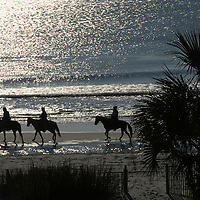 Horseback riders on a South Carolina beach.
