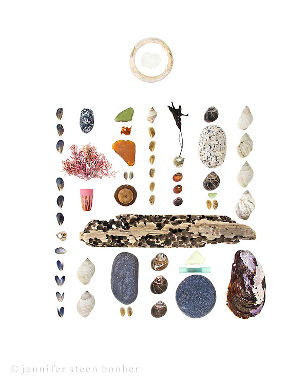 From left to right, top to bottom:<br /> <br /> Hovering above: plastic ring, sea glass<br /> Row 1: young Blue Mussels (Mytilus edulis), Northern Rock Barnacle (Semibalanus balanoides), more mussels<br /> Row 2: granite beach stone, Corallina officinalis, plastic marker cap, driftwood, Dog Whelks (Nucella lapillus)<br /> Row 3: sea glass, fish eggs (dried out now but there's a photo of them fresh in the CW2 blog post), sea glass, more mussels (not sure if they're Blue or Horse Mussels), acorn (probably Quercus rubra), beach stone, mussels<br /> Row4: Dog whelk, more mussels, Common Periwinkles (Littorina littorea)<br /> Row 5: Seaweed attached to barnacle, Smooth Periwinkles (Littorina obtusata), sea glass, plastic thingy (I think it's from a glow stick), beach stone<br /> Row 6: Common Periwinkles, granite beach stone, sea glass, mussels<br /> Row 7: Dog whelks, Horse Mussel (Modiolus modiolus)