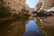Ein Avdat, sweet water spring in the negev desert, israel