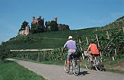 Deutschland, Germany,Baden-Wuerttemberg.Schwarzwald.Weinberge mit Schloss Ortenberg (bei Offenburg), Weg mit Radfahrern.Ortenberg Castle near Offenburg, vineyards, cyclists...