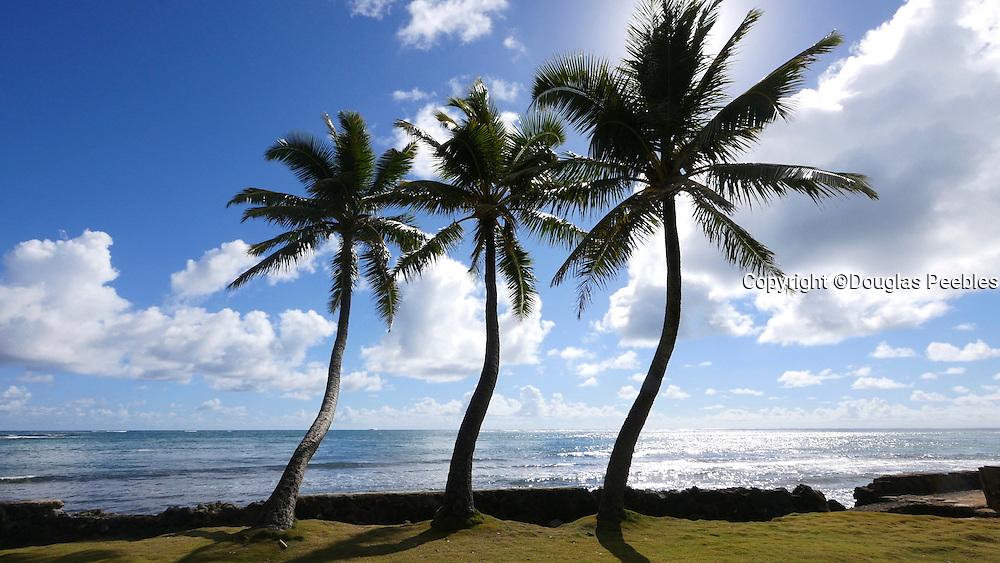 Kaaawa Beach, Windward Oahu, Hawaii