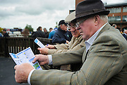 Fairyhouse horse races hippodrome is one of the most importants of Ireland.
