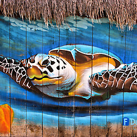 Hawksbill Sea Turtle Mural near San Miguel, Cozumel, Mexico<br />