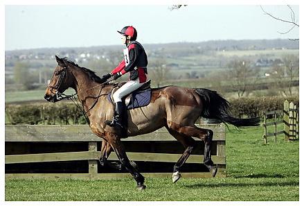 Buckingham Riding Club Eventer Trials at Milton Keynes Riding Club..5-4-2009.Hope Revisited