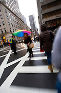 A pedestrian in New York crosses 5th avenue in the rain with a rainbow umbrella