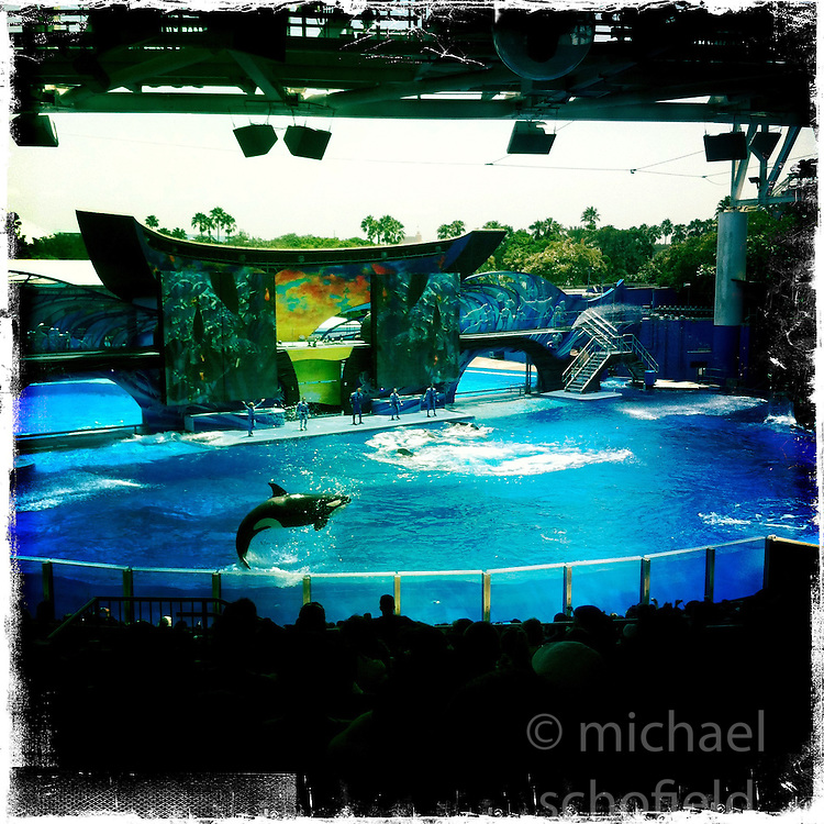 The new Shamu show, One Ocean at SeaWorld's Waterpark. Orlando holiday 2012. Photo taken with the Hipstamatic photo application on Apple iPhone 4.