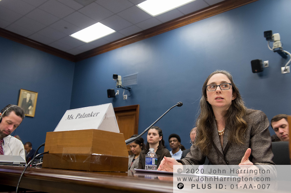"Ms. Dania Palanker, Assistant Research Professor, Georgetown University testifies before the Small Business Committee of the U.S. House of Representatives titled, ""Reimagining the Health Care Marketplace for America's Small Businesses"", Tuesday, February 7, 2017."