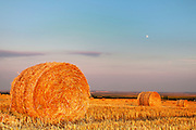 Field with bales of hay at sunset