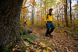Hiking on the Blueberry Mountain Trail in New Hampshire's White Mountains.  Benton, New Hampshire.  Fall.  Northern Hardwood forest. (MR)