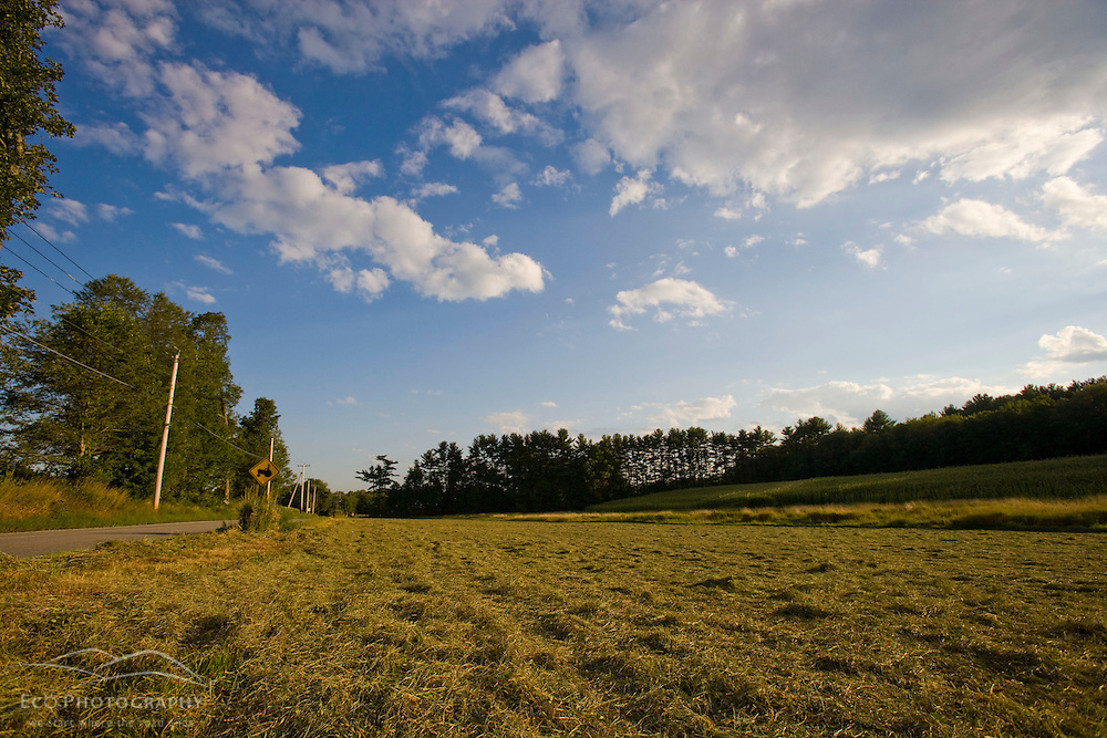 A hay and corn field on a  farm in Pepperell, Massachusetts.