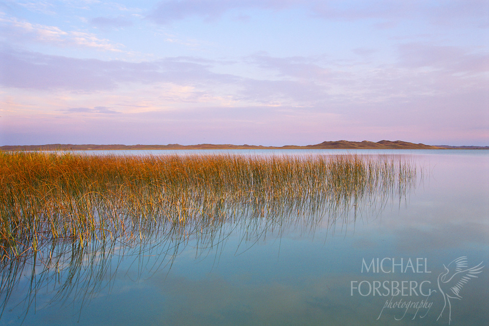 Pastel colors from the sky reflect in the Big Alkali Lake in the Nebraska Sandhills, forming a peaceful and serene scene.