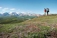 A backpacking couple explore the wilderness of Denali National Park, Alaska.