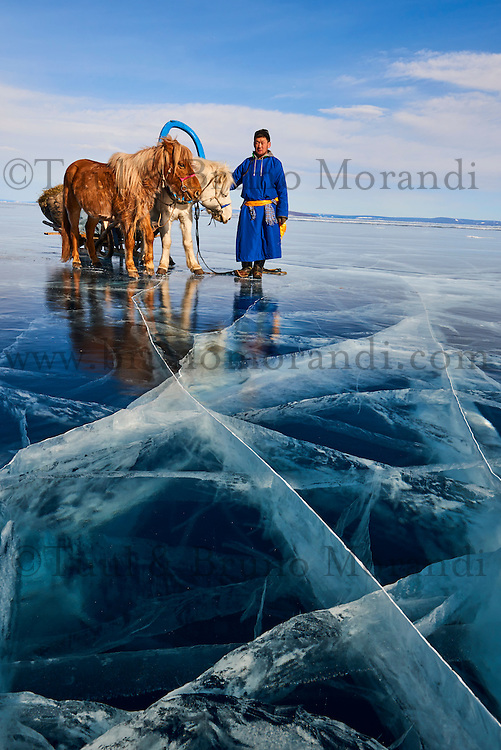 Mongolie, province de Khovsgol, traineau à cheval sur lac gelée de Khovsgol en hiver // Mongolia, Khovsgol province, horse sled on the frozen lake of Khovsgol in winter