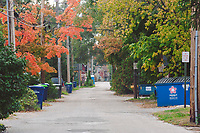 Alleys in Traverse City, Michigan on October 9, 2018 (Gary L Howe) Mixed Use: 8th Street