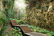 One of the beautiful trails at the Wild Boar Trench on Little Liuqiu Island, Taiwan.