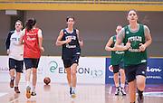DESCRIZIONE : Torneo di Schio - allenamento  <br /> GIOCATORE : team italia<br /> CATEGORIA : nazionale femminile senior A <br /> GARA : Torneo di Schio - allenamento<br /> DATA : 28/12/2014 <br /> AUTORE : Agenzia Ciamillo-Castoria