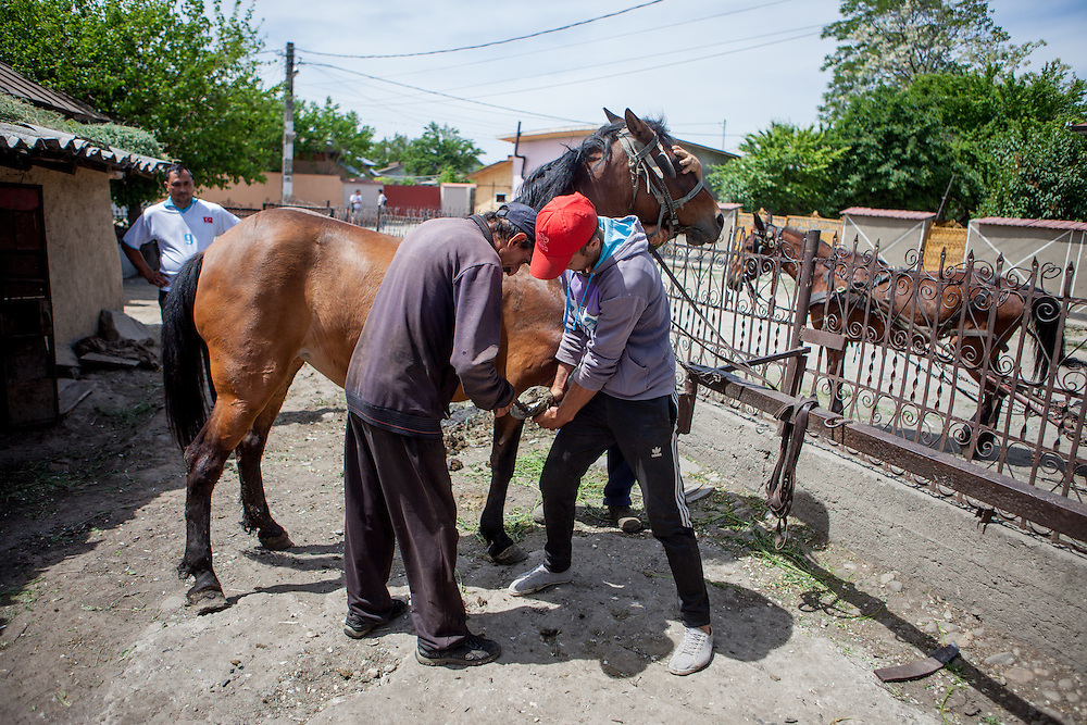 Men in Frumuşani's blacksmiths at work cleaning a horse's shoes. Though horses and blacksmithing are traditional Roma occupations, the blacksmiths provides only meager business for local Roma men. The lack of employment opportunities permeates every part of Frumuşani.