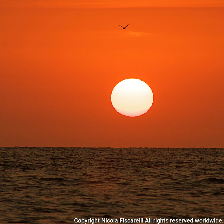 The sun  sets in the Bay of Banderas,Mexico.