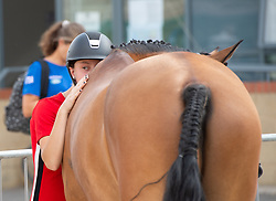 201 - Anne Van Dijck (BEL) & Hoppenhof's Canda Z - CH-EU-P-C2* - FEI Pony European Championships 2018 - Bishop Burton College