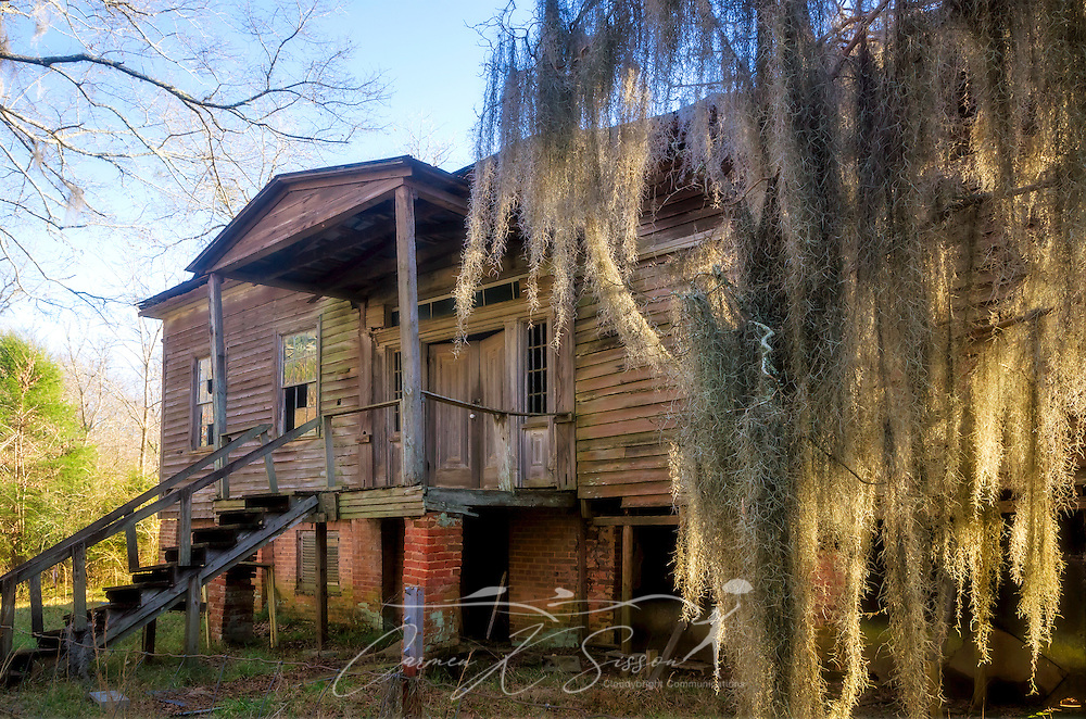 """The dilapidated remains of the Fambro Arthur home are pictured, Feb. 7, 2015, in Orrville, Alabama. The wooden frame cottage was built in the 1840's and was more typical of the average person's house in the antebellum era. Besides the slave quarters at Kirk-View mansion, the Fambro Arthur home is the only remaining structure on the grounds of Old Cahawba Archaeological Park. It is considered """"at risk"""" by the Alabama Historical Commission, which is seeking funds to restore it. Cahaba, also known as """"Old Cahawba,"""" was Alabama's state capital from 1819-1826 but was abandoned after the Civil War. It is now considered a ghost town. It is located in Dallas County near Selma, Alabama. (Photo by Carmen K. Sisson/Cloudybright)"""