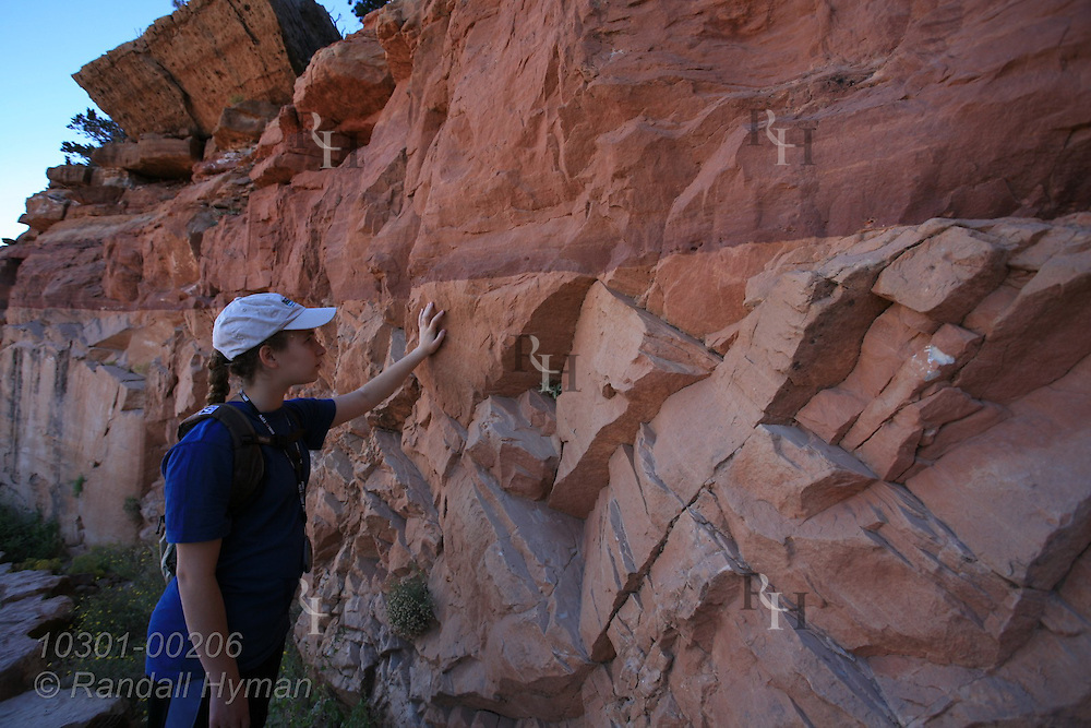 Girl studies transition between Toroweap Formation and Coconino Sandstone along the upper South Kaibab Trail; Grand Canyon National Park, Arizona.