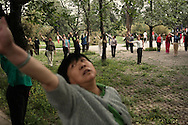 Beijingers practicing Tai Chi in the park of Temple of heaven, in the morning.