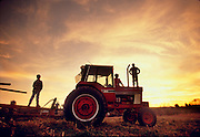 Farmers with tractor in field