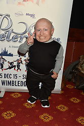 VERNE TROYER at an after show party following the opening of Peter Pan at the New Wimbledon Theatre, 93 The Broadway, London on 8th December 2015.