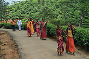 Tamil festival, Hatton, Sri Lanka