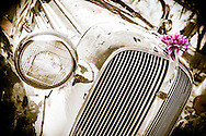 Vintage Classic Car with Pink flower in grill, Route 66, USA