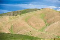 Mongolie, province de Uvs, région de l'ouest, cavalier mongol dans les montagnes // Mongolia, Uvs province, western Mongolia, Mongolian cavalier in the mountains