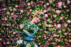 2018_04_25_Harrogate_Flower_Show_AMC