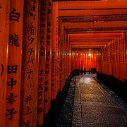 The Magic of Fushimi Inari