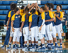2016-17 A&T Women's Basketball vs Ohio University