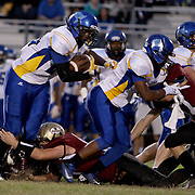 Ashley High School hosted Laney High School in football Friday November 1, 2013. (Jason A. Frizzelle)
