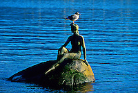 """""""Girl in Wetsuit"""", Stanley Park, Vancouver, British Columbia, Canada"""