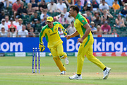 Wicket - Alex Carey of Australia celebrates the run out of  Mohammad Nabi of Afghanistan by Steven Smith of Australia during the ICC Cricket World Cup 2019 match between Afghanistan and Australia at the Bristol County Ground, Bristol, United Kingdom on 1 June 2019.