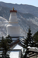 China, Wutai Shan, 2008. Over 50 meters high, the Tibetan-style pagoda of Tayuan Temple is the symbol of the valley. On a windy day, the 250 bells atop this Ming-dynasty structure can be heard from far away.