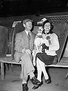17/3/1959<br /> 3/17/1959<br /> 17 March 1959<br /> Irish Kennel Club Dog Show at the R.D.S., Ballsbridge, Dublin.